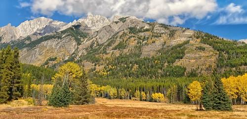autumn canada fall alberta canadianrockies bowvalleyparkway banffpark mtishbel hilldalemeadow