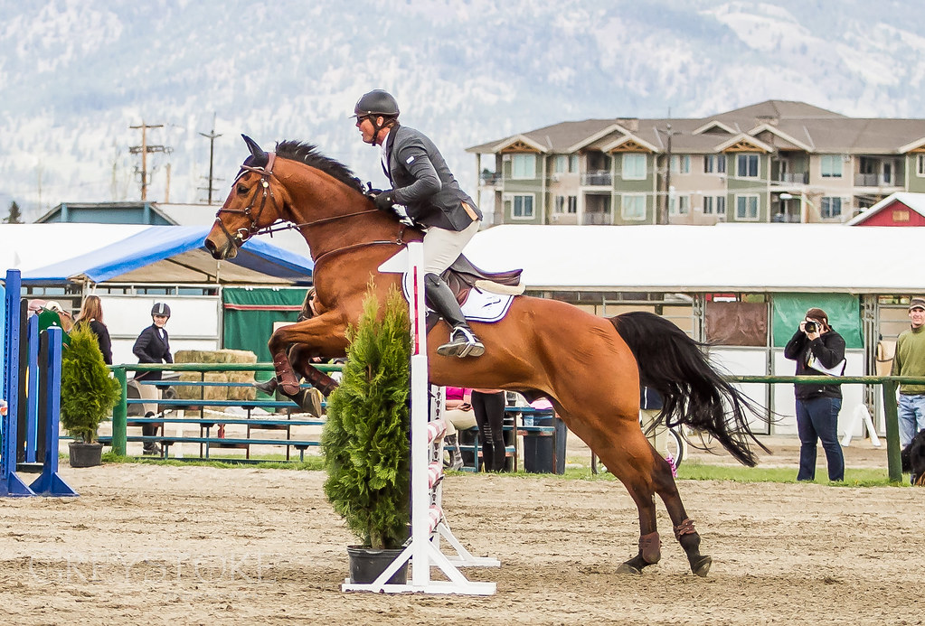 Equestrian Show Jumping -- Sports in photography-on-the ...