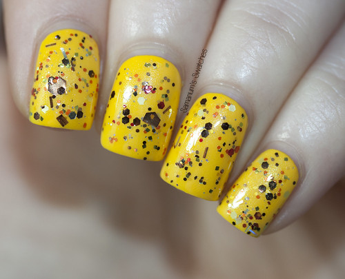 Polish Addict Indian Summer (6)