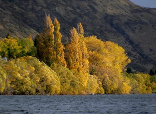 Lake Hayes Otago NZ (3)