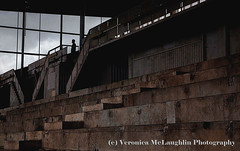 Abandoned future at Avondale Racecourse, Auckland, New Zealand