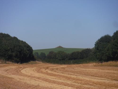Clandon Barrow from Grove Hill Bottom