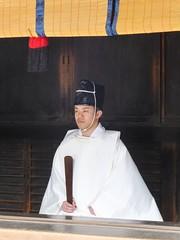 Meiji Jingu VI
