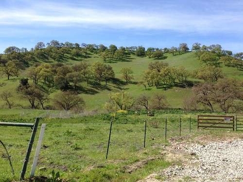 April hills