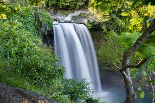 音止めの滝 2012.6.6-4