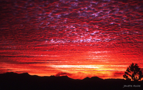 park sunset clouds canon fuji mt australia velvia national bushwalking scanned queensland 1994 barney eos500 mainrangenationalpark scenicrim 35mmslidefilm