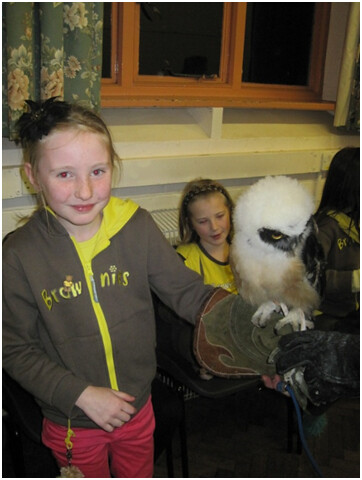 Holding an Owl at our Sleepover