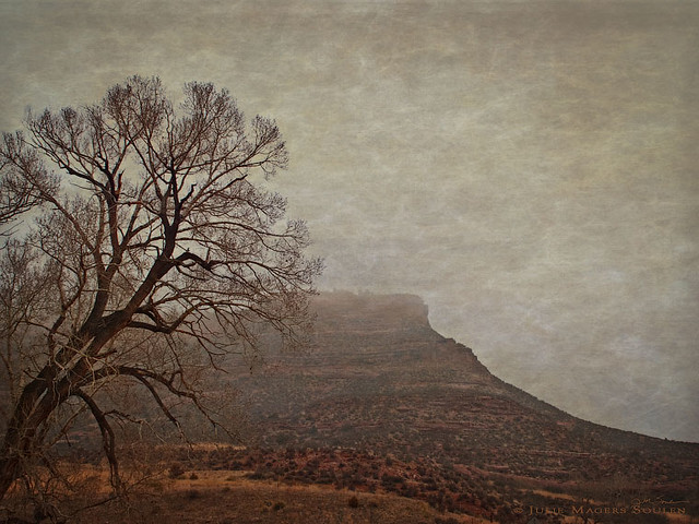 Landscape photography, done in an Old West style, of a foggy mountain landscape with a bare tree and red mesa.