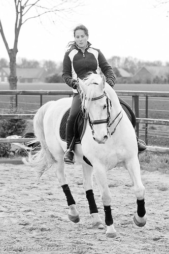 Galop-pirouette