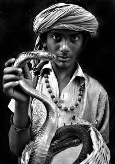 A young snake charmer with king cobra.