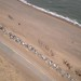 Big Island Beach near Merigomish, Nova Scotia - Kite Aerial Photography (KAP) by Rob Huntley Photography - Ottawa, Ontario, Canada