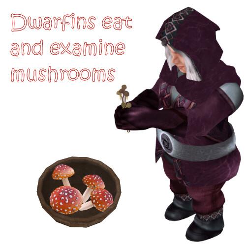 Dwarfins B