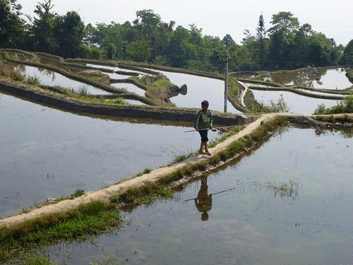 Yunnan13-Yuanyang 6 (4)
