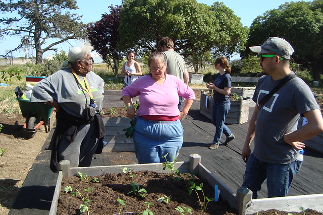 Alice Griffith Community Garden Hunter 39 S Point San