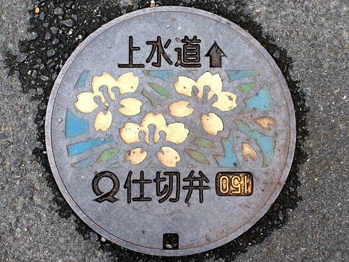 flower japan geotagged 日本 manhole 花 kochi マンホール 仕切弁 sukumo 高知県 宿毛市 geo:lat=3293926431021176 geo:lon=13272656366229057