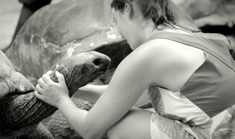 Lucky tortoise...such affections