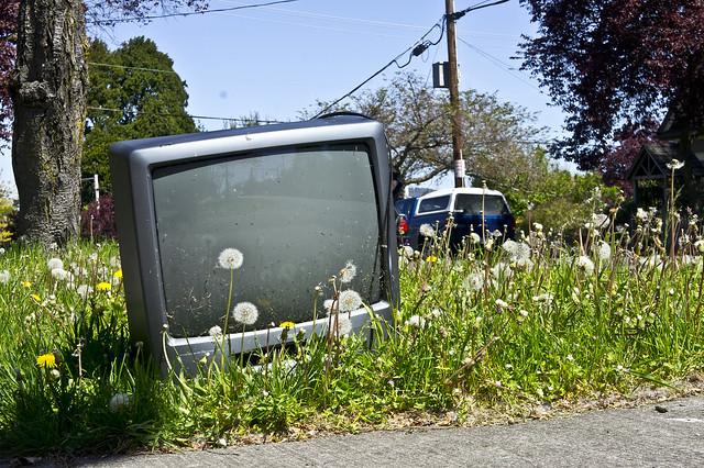 Dumped old TV