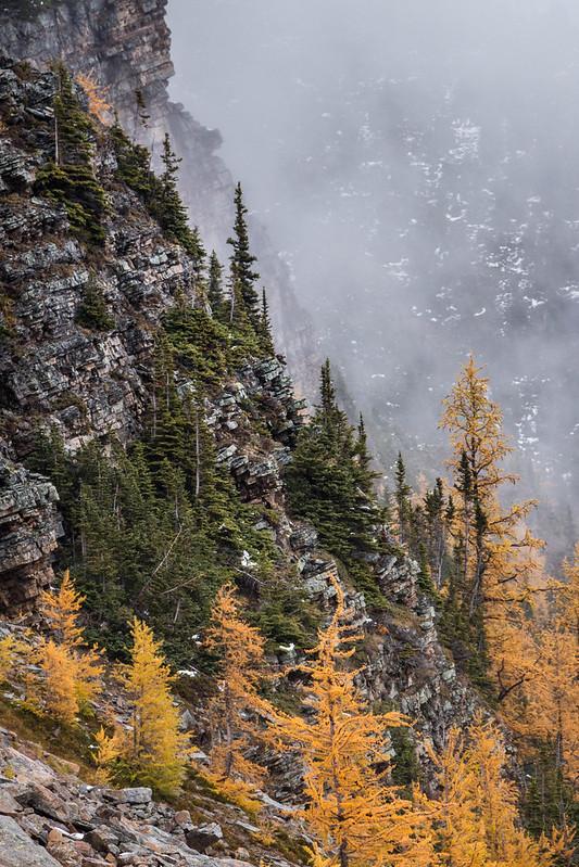 Saddleback Pass Trail