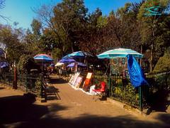 Vista Chilango DF_Barrio San Jacinto_Movil_CC_1024x768-6.jpg