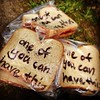 "Timothy's work. He made the sandwiches and labeled the bags. ""One of you can have this"""