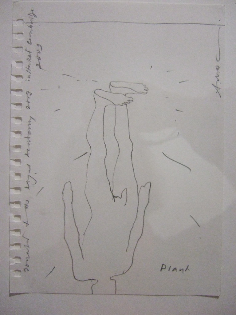 gormley plant sketch