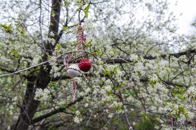 Marțișoare în copaci