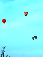 illustration(0.0), toy(0.0), aircraft(1.0), parachute(1.0), hot air balloon(1.0), vehicle(1.0), extreme sport(1.0), hot air ballooning(1.0), balloon(1.0), sky(1.0),