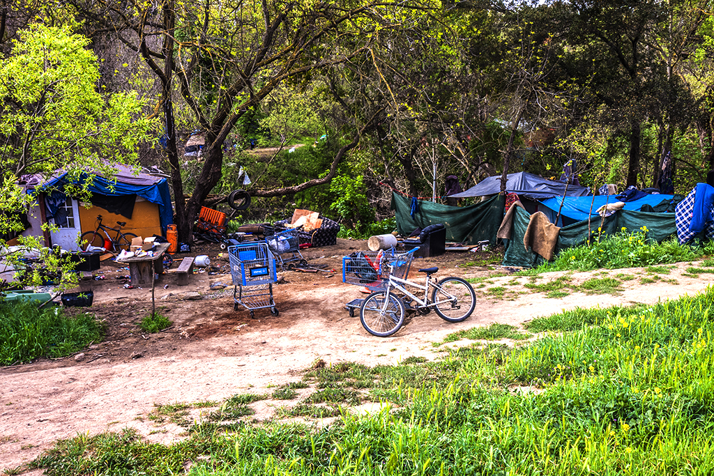 Tent-city-on-Story-Road-on-3-18-13--San-Jose-14