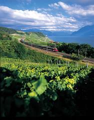 Regional Pass Genfersee–Alpen– jízda na historickém parníku, jezdit zubačkou na vrcholy adalší