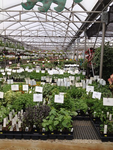 Bench's Greenhouse