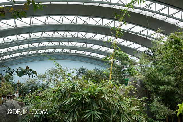 River Safari - Giant Panda Forest enclosure