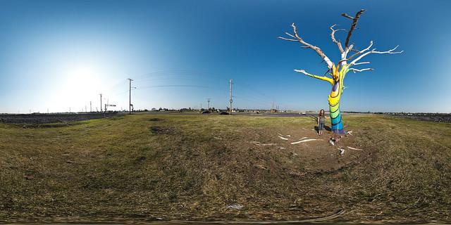 The Spirit Tree - Joplin, MO