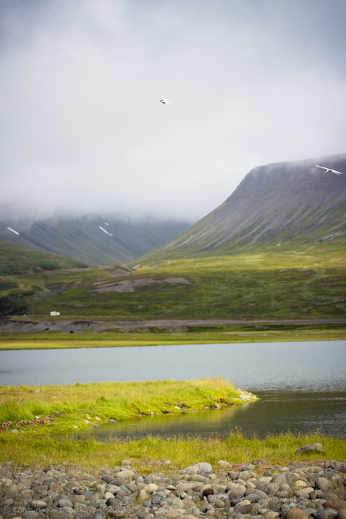 Iceland, Day 5 [25]