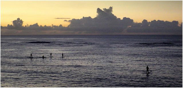 PADDLE-BOARDERS RETURNING TO MEADA FLATS AFTER SUNSET