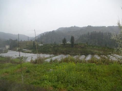 Hunan13-Zhangjiajie-Fenghuang-Bus (94)