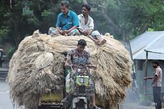 Barisal (Bangladesh)