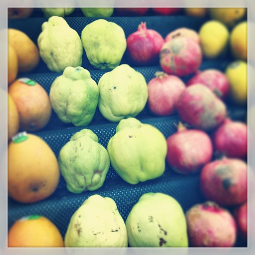 Look what we've been playing with... #quince #autumn #sydney