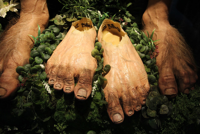 Hobbit Desolation of Smaug Feet Prop