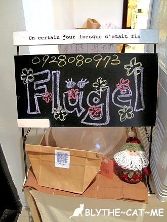 Fluge (2)