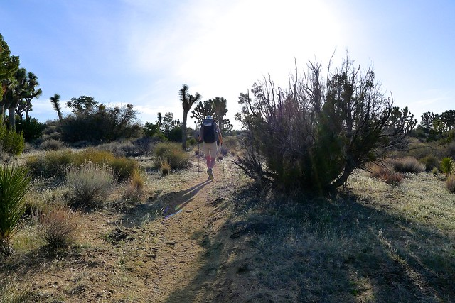 California Hiking and Riding Trail