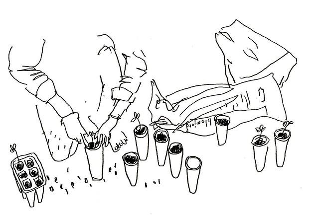emil & plantorna
