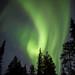 Swedish Aurora by Thomas Heaton