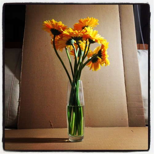 flowers by Nature Morte