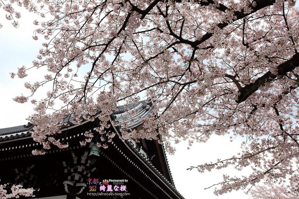 2013-04-03-11h04m25IMG_3765
