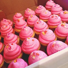 Minis for Hollaback Belfast #lilypinkbakery