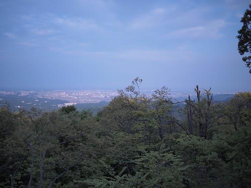 Mt.Takao - 11