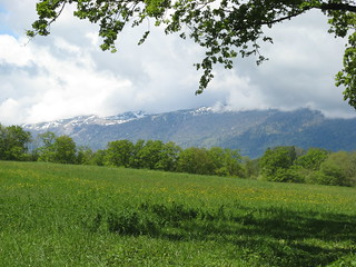 View of the Jura