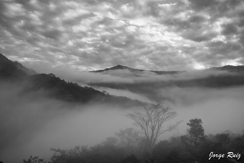 colombia cundinamarca nimaima