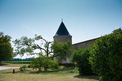 Château Livran - Eté 2016 - Photo of Lesparre-Médoc