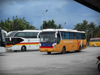 Yellow Bus Line A-21